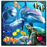 Ocean Reef Life APK indir