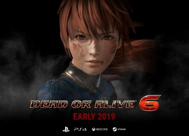 dead or alive 6 pc indir