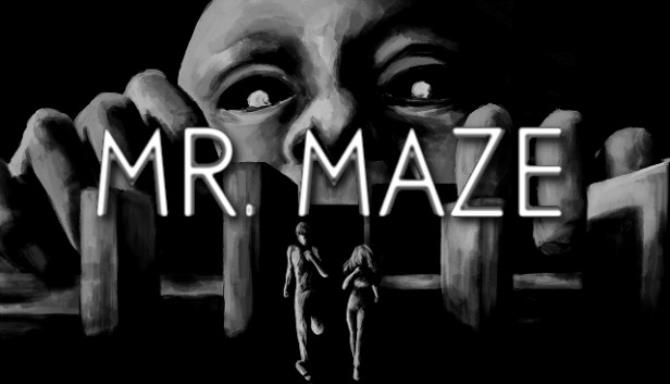 mr.maze pc indir