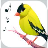 Kuş Şarkısı Sesi APK indir
