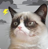 Grump Cat Weather APK indir
