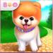 Boo – En Sevimli Köpek APK indir